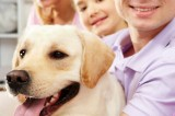 Niente Tares per chi adotta un cane a Solarino
