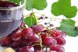 Vino Made in Italy: la super produzione 2013 che ha battuto la Francia