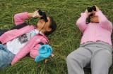 Spring Alive: lo spettacolo della migrazione davanti ai tuoi occhi