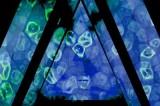 'Maui Tears': gli Sleepy Sun offrono un gustoso assaggio di space rock