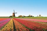 I 20 paesaggi colorati più belli del mondo: dove la natura si tinge di arcobaleno