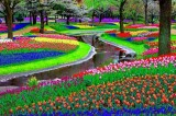 L'equinozio di primavera nel mondo. Le foto della fioritura della vita