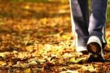 Fitwalking: quando il camminare diventa arte