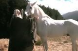 E' morto Ombromanto, cavallo di Gandalf ne 'Il Signore degli Anelli'