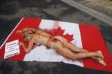 Protesta choc della PETA: nuda ed insanguinata sulla bandiera canadese