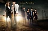 Bones, settima stagione: fiocco rosa per Temperance Brennan e Booth