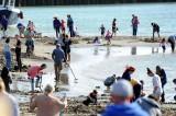Folkestone, caccia ai lingotti d'oro nascosti in spiaggia da un'artista