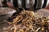 Intervista al dott. Robustelli Della Cuna, raffinato ed esperto cultore del tè