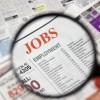 Lavoro, contratto per apprendisti da 22mila euro. Nessuno si presenta