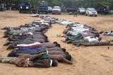 Sterminio in Nigeria, l'inferno di Boko Haram