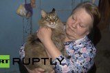 Masha, la gatta eroina che ha salvato un neonato dalla morte
