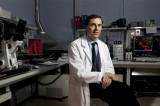 """Diventa farmaco la proteina Ptx3 che """"spegne"""" i tumori"""