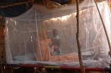 Malaria: un rigonfiamento nel cervello causa le morti
