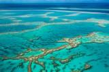 100 milioni per la Barriera corallina, il governo soccorre l'ambiente
