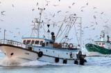 Peschereccio italiano dirottato a 30 miglia dalle coste libiche