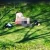 VIDEO Sesso al parco in pieno giorno davanti agli uffici affollati
