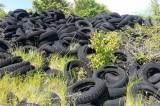 """Rapolano, finalmente verrà smaltita la """"collina dei pneumatici"""""""