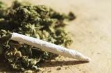 Messico, sentenza storica: sì alla legalizzazione della marijuana