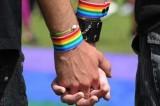 Ddl Cirinnà: perché solo per i gay?