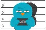 Twitter: guerra ai copioni, protetto il diritto d'autore