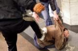 Roma, la baby gang dei Bad Boys: rapine social con WhatsApp e Facebook