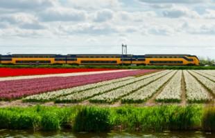 Eco-treni in Olanda: in arrivo la prima ferrovia a energia eolica