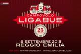 Ligabue Campovolo 2015: info, biglietti, area Pit, mappa e parcheggi