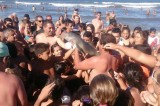 Il delfino morto per i selfie? Solo una bufala!