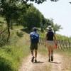 Escursioni in Toscana? Ecco alcune idee e consigli utili