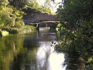 fiumeNinfaversonordovest-vi