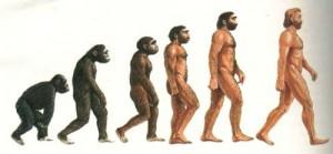 evoluzione_uomo_N