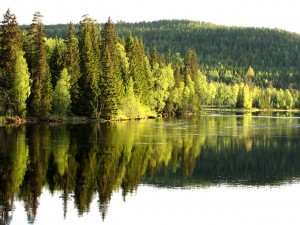 Uno splendido paesaggio svedese