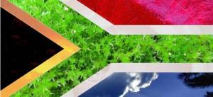 """La bandiera """"verde"""" del Sudafrica"""