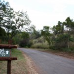 Groenkloof Nature Reserve - Photo by 2010 FIFA World Cup Organising Committee South Africa