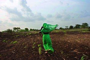 """Lynsey Addario, """"Siccità""""- India: il mancato arrivo delle piogge monsoniche ha rovinato il raccolto di miglio"""