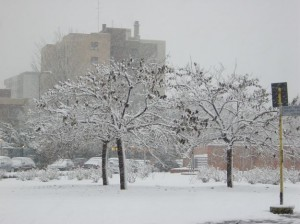 gelo neve Italia