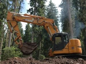 Lo sfruttamento selvaggio di una foresta