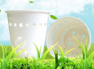 rifiuti biodegradabili