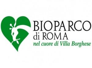 Fondazione Bioparco Roma