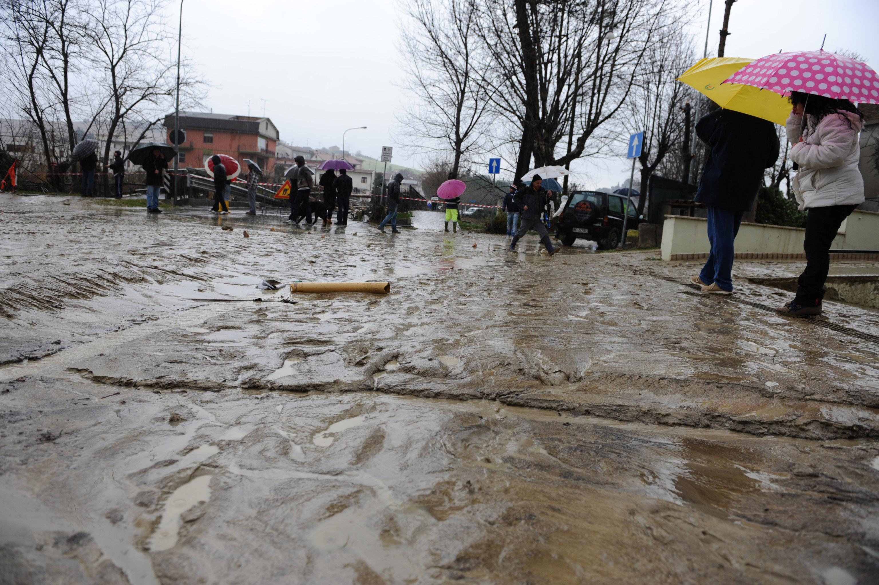 Risultati immagini per bioregionalismo calamità naturali