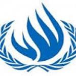 Logo consiglio diritti umani (www.vociglobali.it)