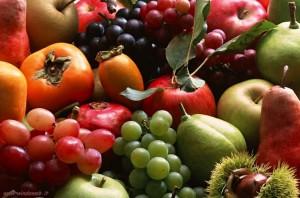 frutta e verdura farmers market