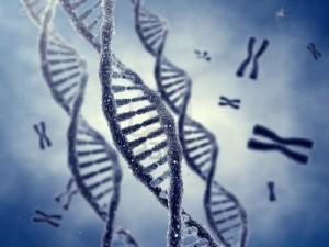 Rappresentazione del DNA a doppia elica (123rf.com)
