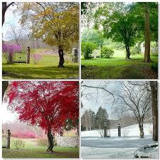 le 4 stagioni