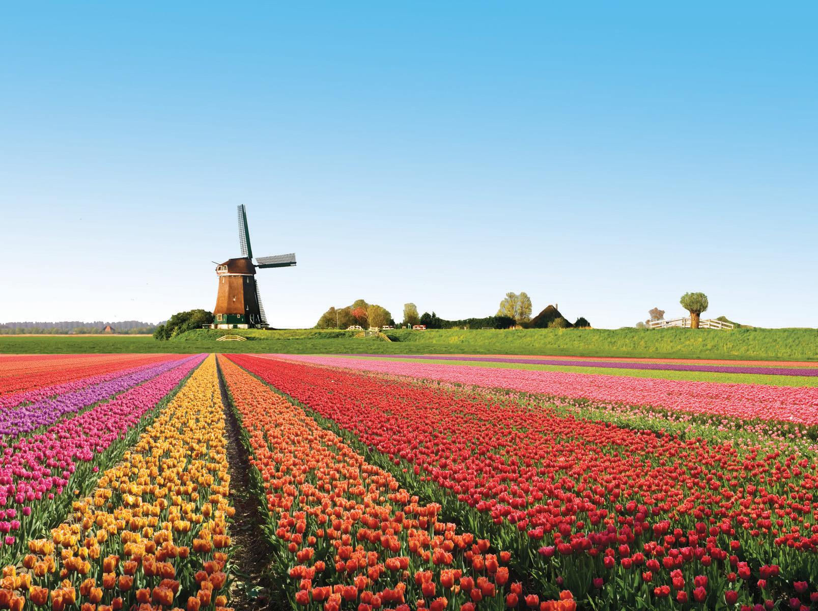 I 20 paesaggi colorati pi belli del mondo dove la natura for Disegni di paesaggi colorati
