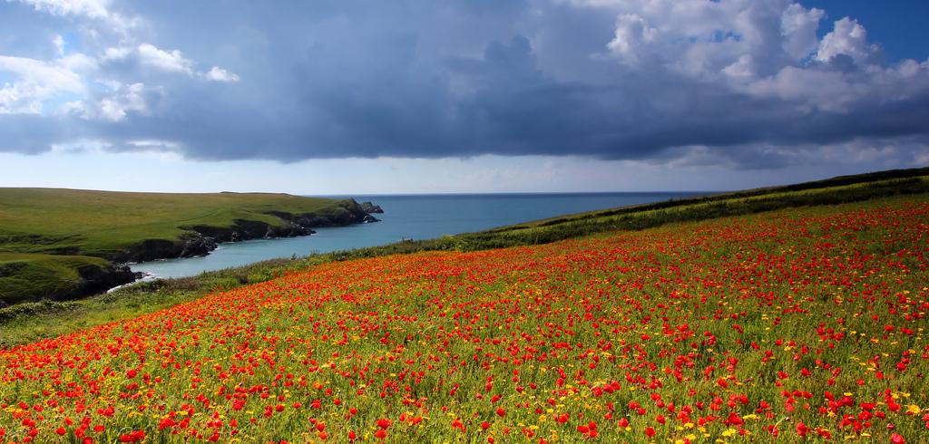 I 20 paesaggi colorati più belli del mondo dove la natura si tinge di arcobaleno  (15)