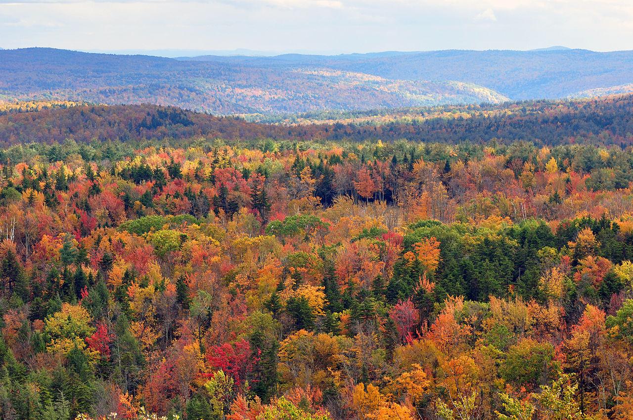 I 20 paesaggi colorati più belli del mondo dove la natura si tinge di arcobaleno  (19)