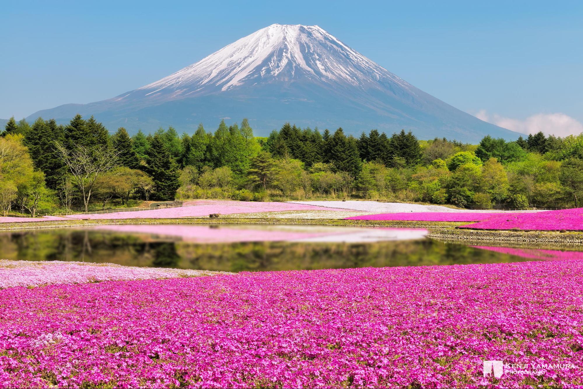 I 20 paesaggi colorati più belli del mondo dove la natura si tinge di arcobaleno   (5)