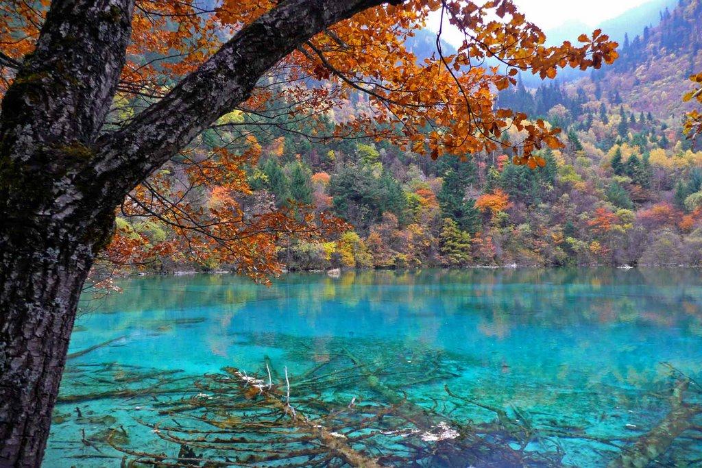 I 20 paesaggi colorati più belli del mondo dove la natura si tinge di arcobaleno   (6)