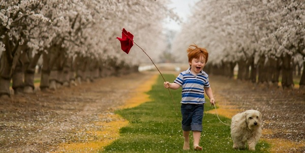 Foto: bhmpics.com